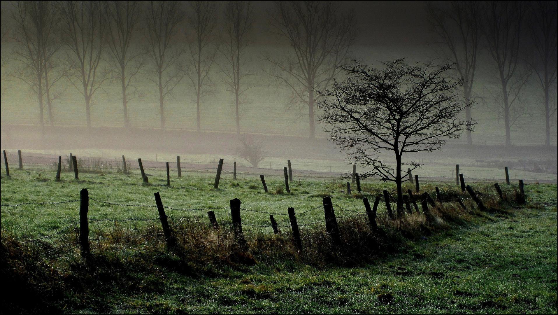 Im Nebel ruhet noch die Welt..