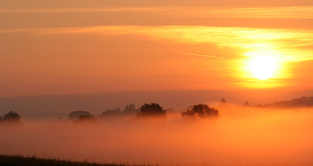 Im Nebel ruhet noch die Welt...