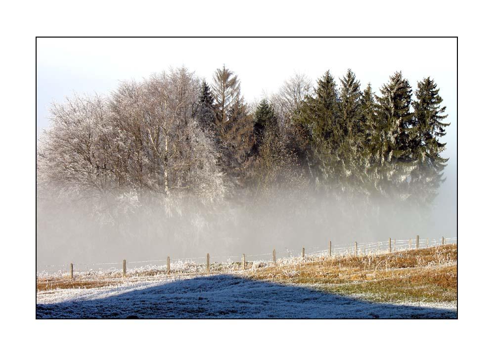 Im Nebel ruhet noch die Welt ...