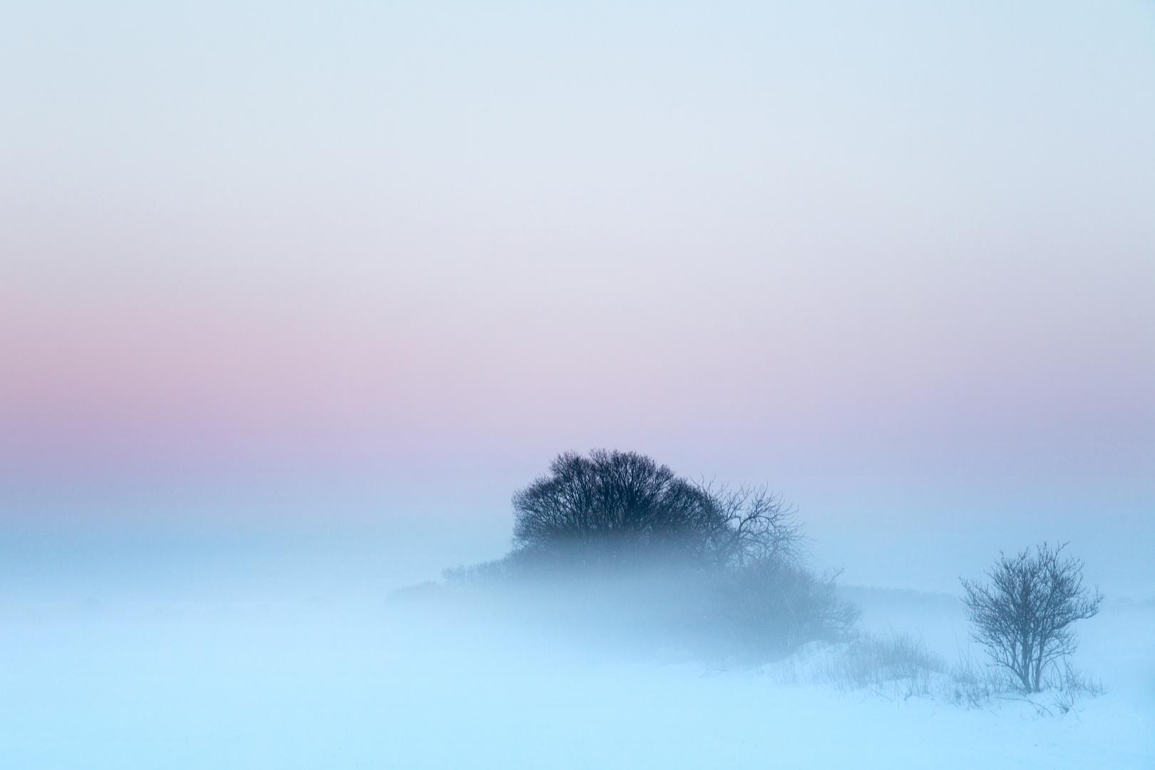 im Nebel versunken