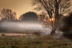 Im Nebelschleier