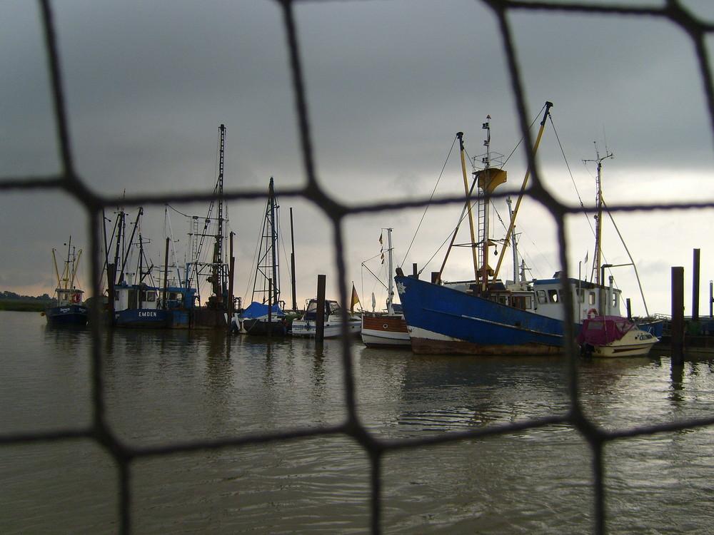 Im Netz der Fischer