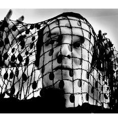 Im Netz des schwarrrrrzen Witwerrrrs