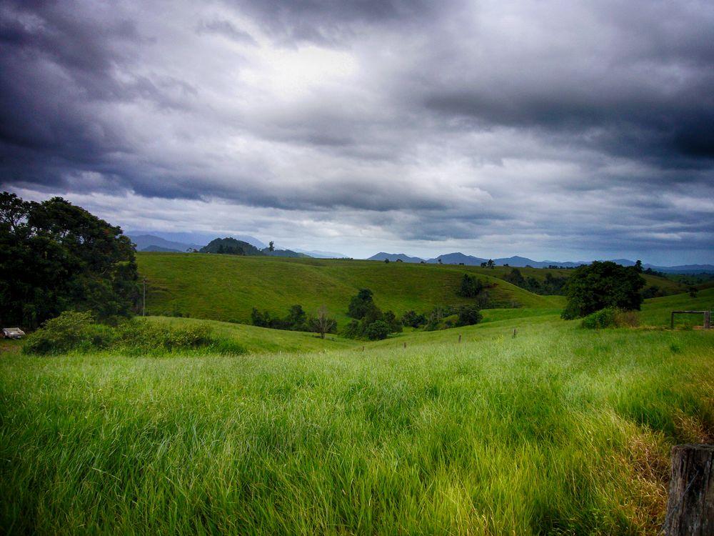 Im Norden Queenslands...