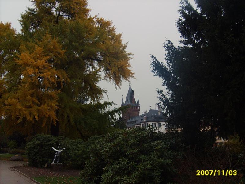 Im November 2007 Weinheim