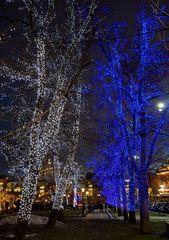 Im Park gegenüber dem Bolschoi-Theater in Moskau.....