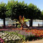 Im Park in Lugano