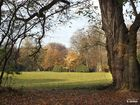 Im Park von Schloss Dyck II