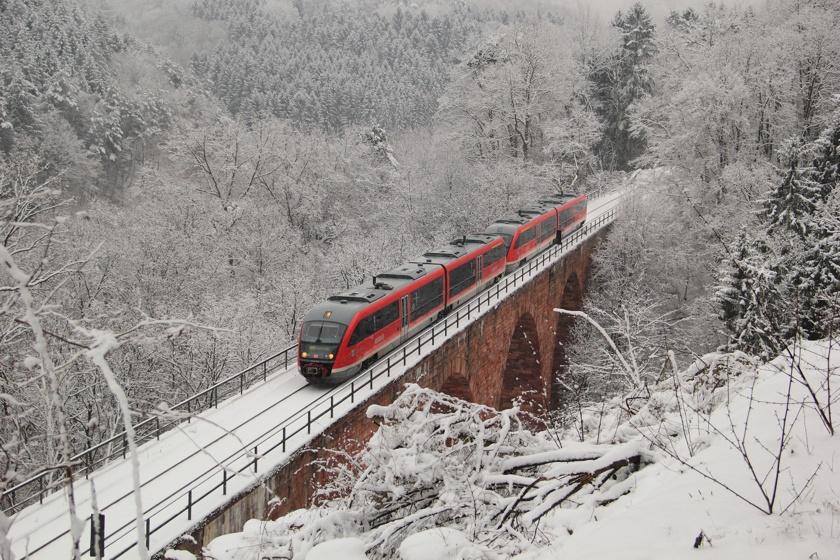 Im pfälzischen Winterwald