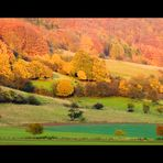 ...im Rausch der Herbstfarben...  - oder: ...ein letzter Blick zurück...