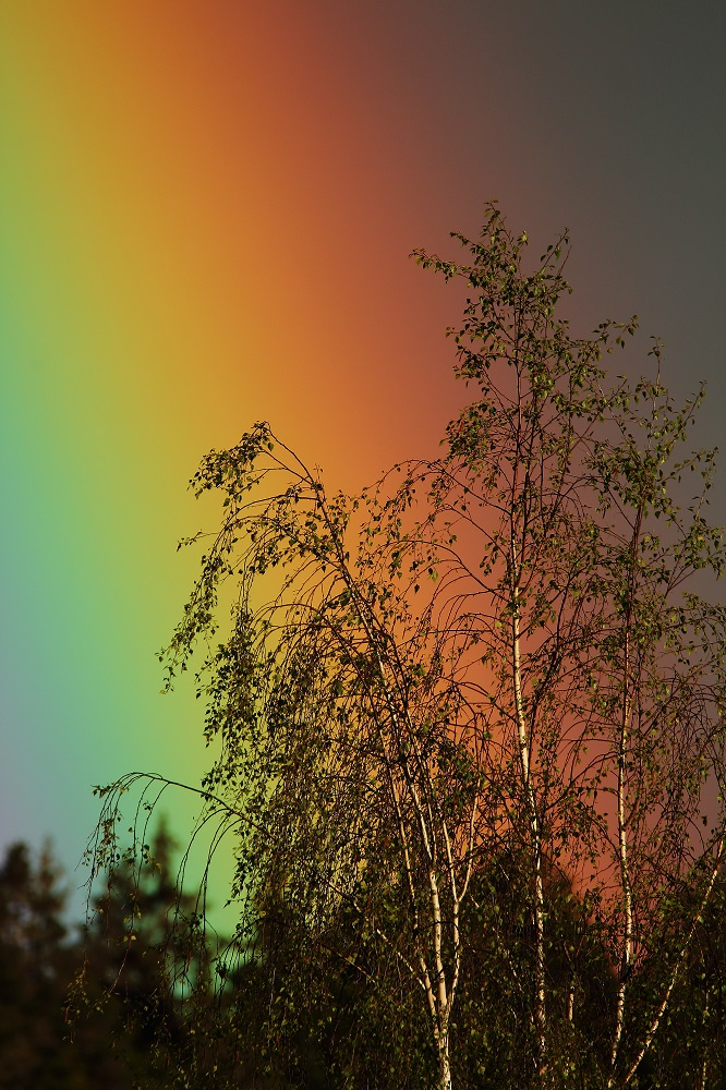 Im Regenbogenland