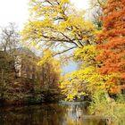 Im Reinbecker Schlossgarten