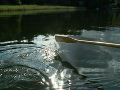 Im Ruderboot auf dem Arendsee