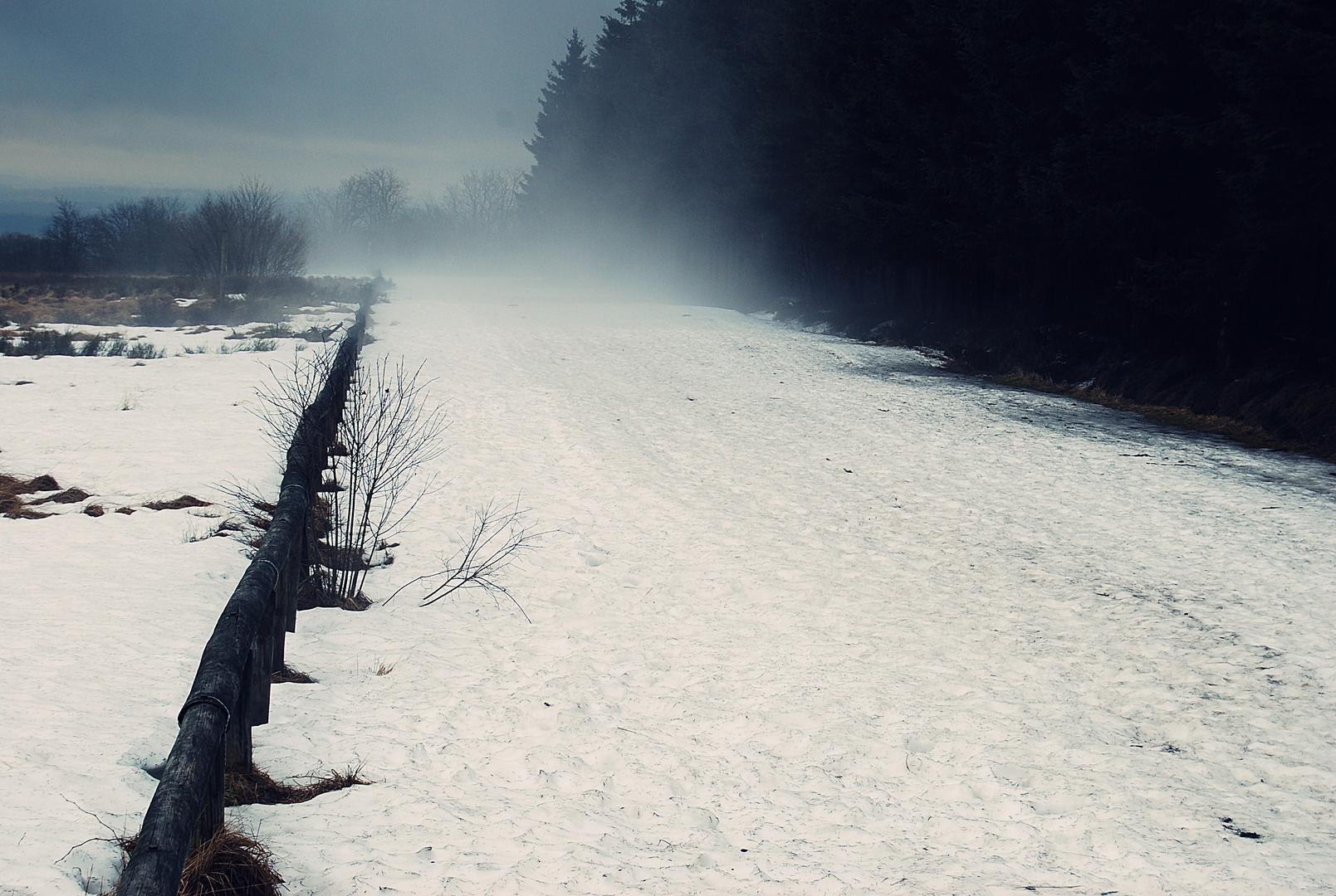 Im russischen Nebel