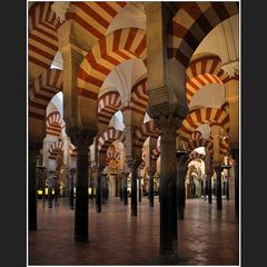 Im Säulenwald der Mezquita