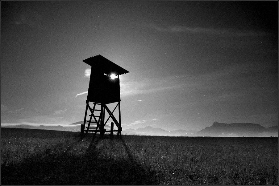 Im Schatten der Nacht