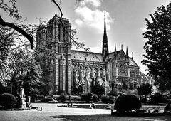 Im Schatten der Notre Dame.       120_2594