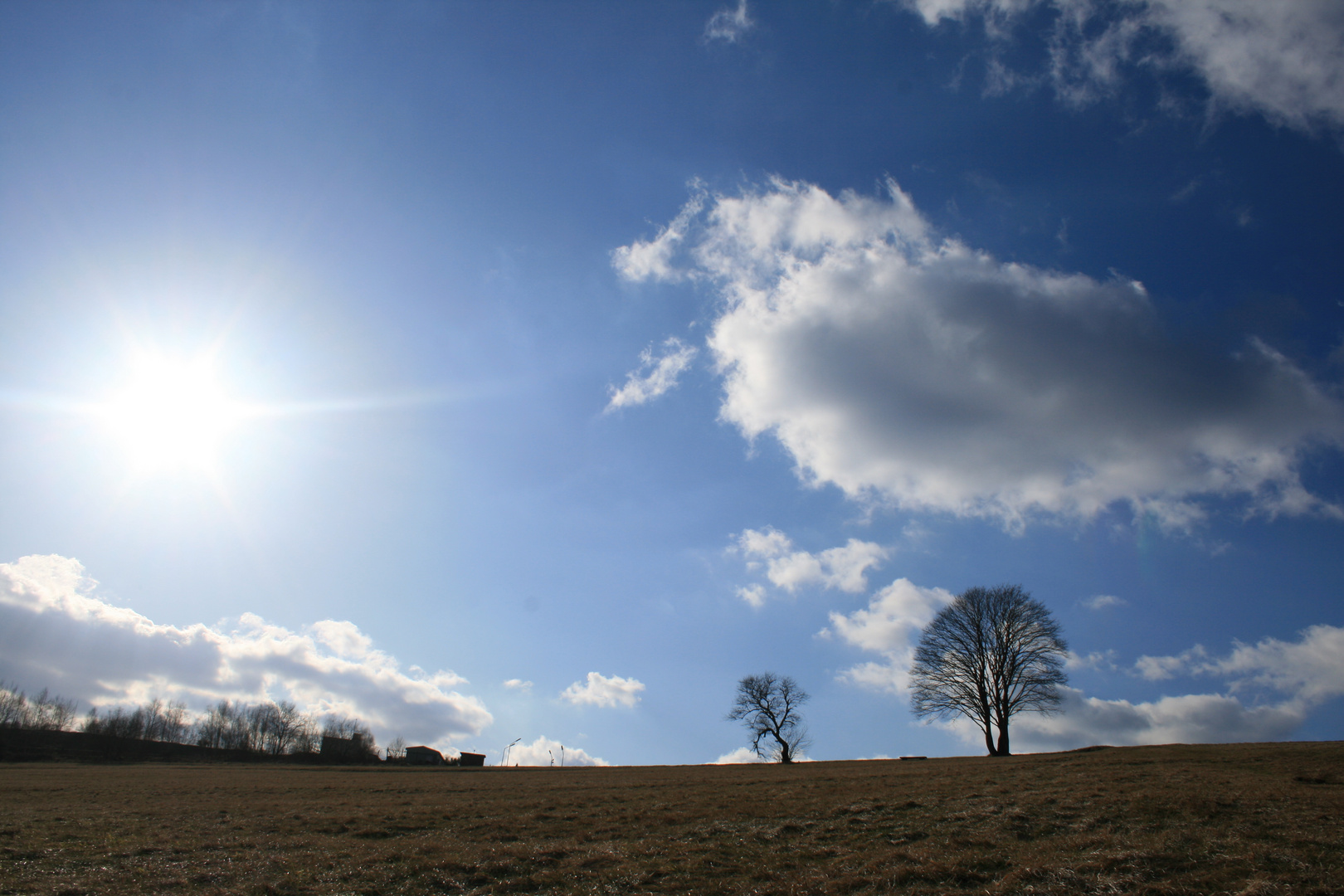 Im Schein der Sonne