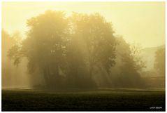 Im Schein des äußeren Nebels...