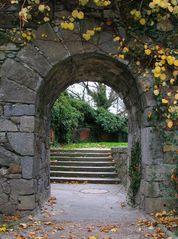 im Schlossgarten....