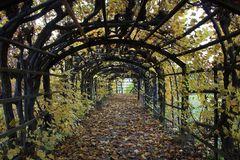 im Schloßgarten sind die Blätter gefallen