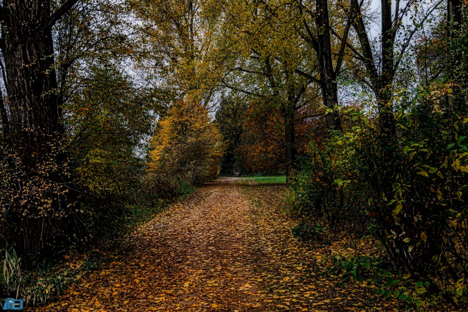 Im Schlosspark Herten