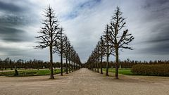 im Schlosspark Schwetzingen