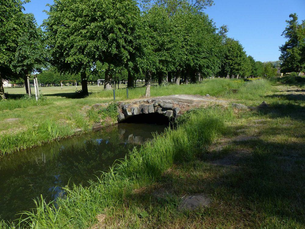 Im Schlosspark von Remplin