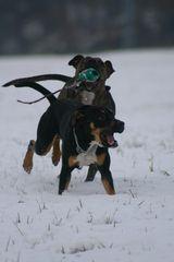 Im Schnee... ;-)