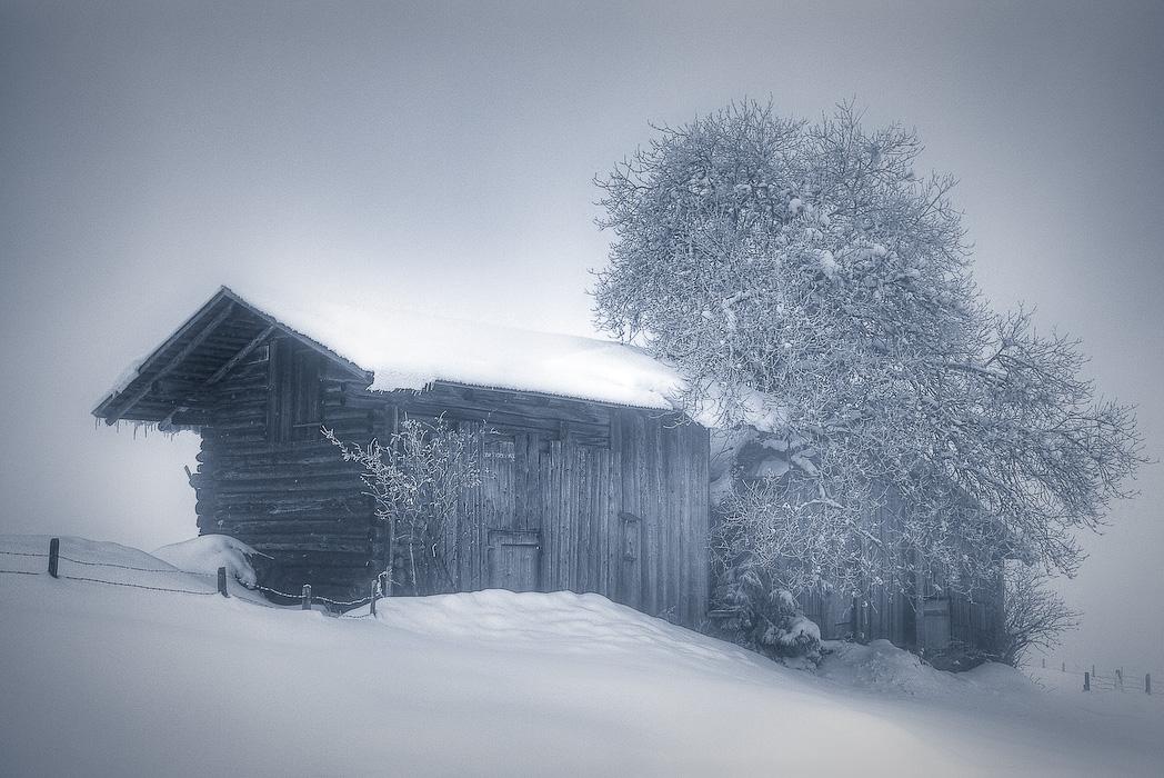 im Schneesturm