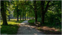 Im Schwarzpark