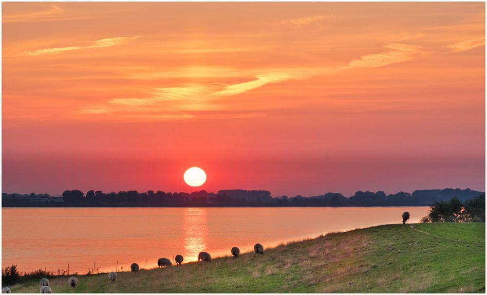 im September an der Elbe