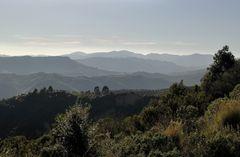 Im Sila-Gebirge
