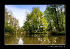 Im Spreewald unterwegs