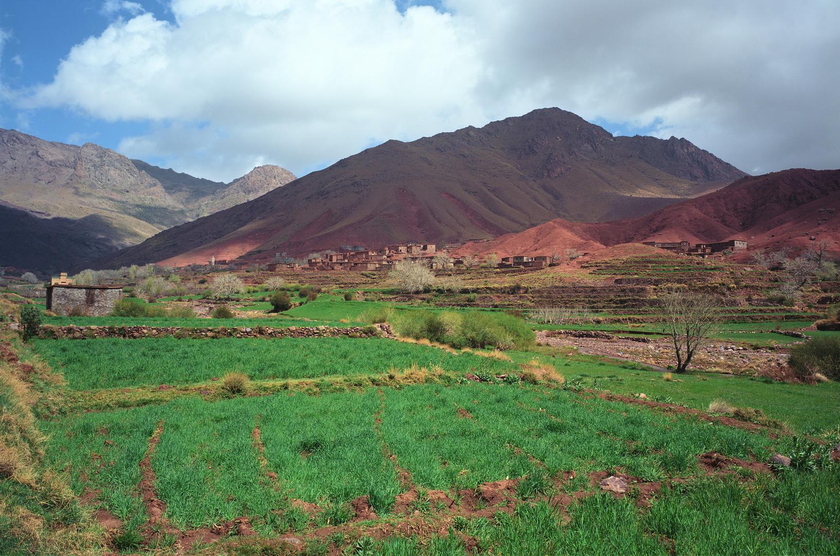Im Süden des Atlas (Am Tizi n'Tichka Pass)