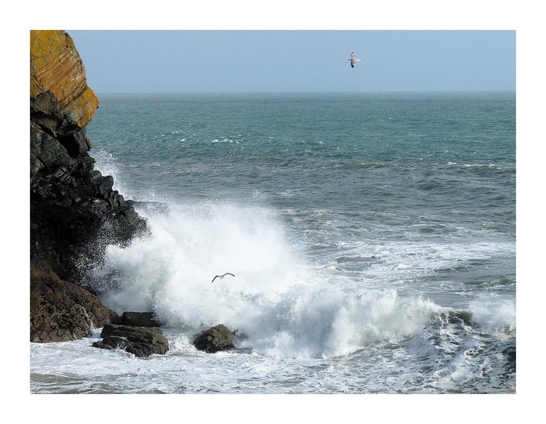 Im Süden von Cornwall