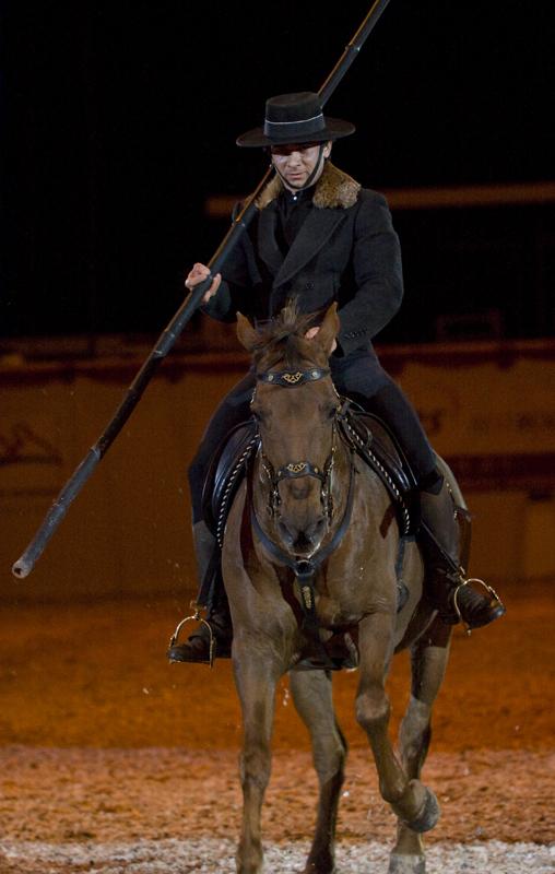 Im Takt der Pferde #2