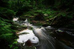 Im Tal der wildromantischen Hoegne I