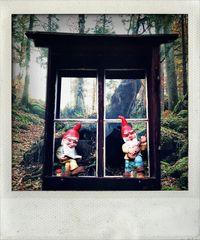 im tiefen Wald,dort wo die Rehlein hausen...