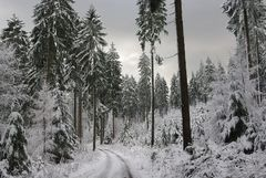 Im tiefsten Winter