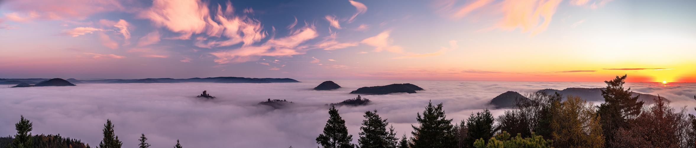 Im Traumland des Nebels ....