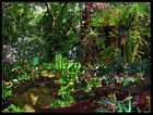 Im Tropenwald