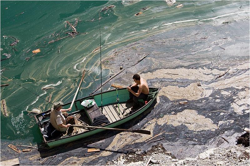 Im Trüben fischen