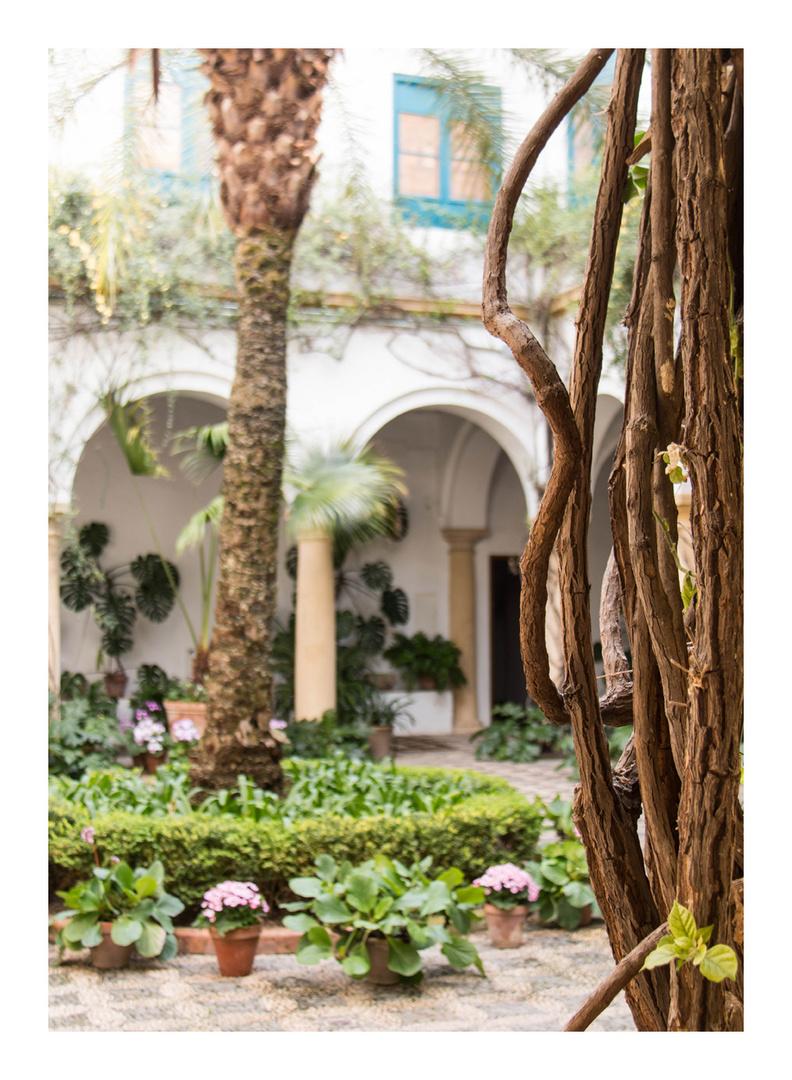im Viana Palace