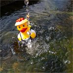 Im Visier *Fließendes Wasser*