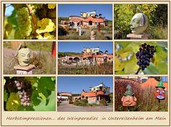 im Weinparadies....