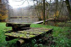 Im Wildecker Forst 1 (Hessen)