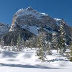 Im Winter Gewand