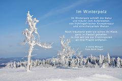 Im Winterpelz
