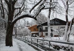 Im Winterwunderland (2)